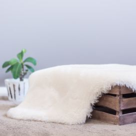 Cozy Mate Ivory Shorn Wool Lambskin